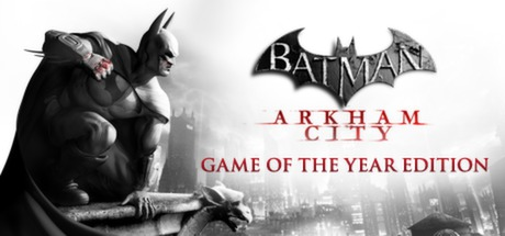Batman: Arkham City Banner
